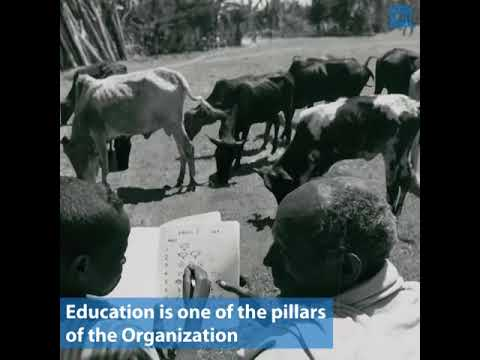 UNESCO and education: a photo history
