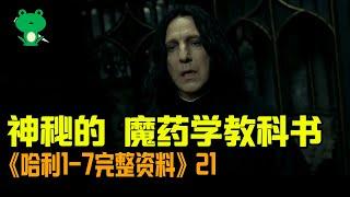 【細品哈利21】20年重溫回憶  混血王子 | 主線精華解析