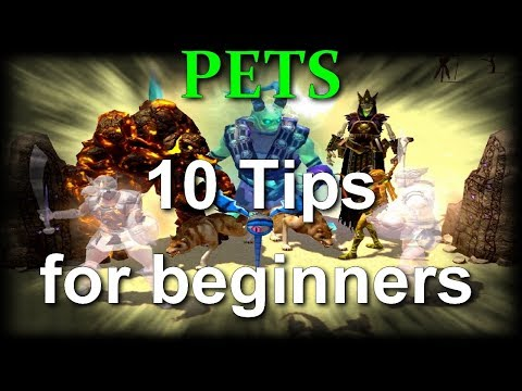 Titan Quest AE/Ragnarok - PETS 10 Tips for beginners