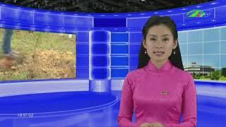 [Thời Sự] Vấn Nạn Lao Động Trẻ Em Cần Được Quan Tâm   Thời Sự Lâm Đồng   LDTV