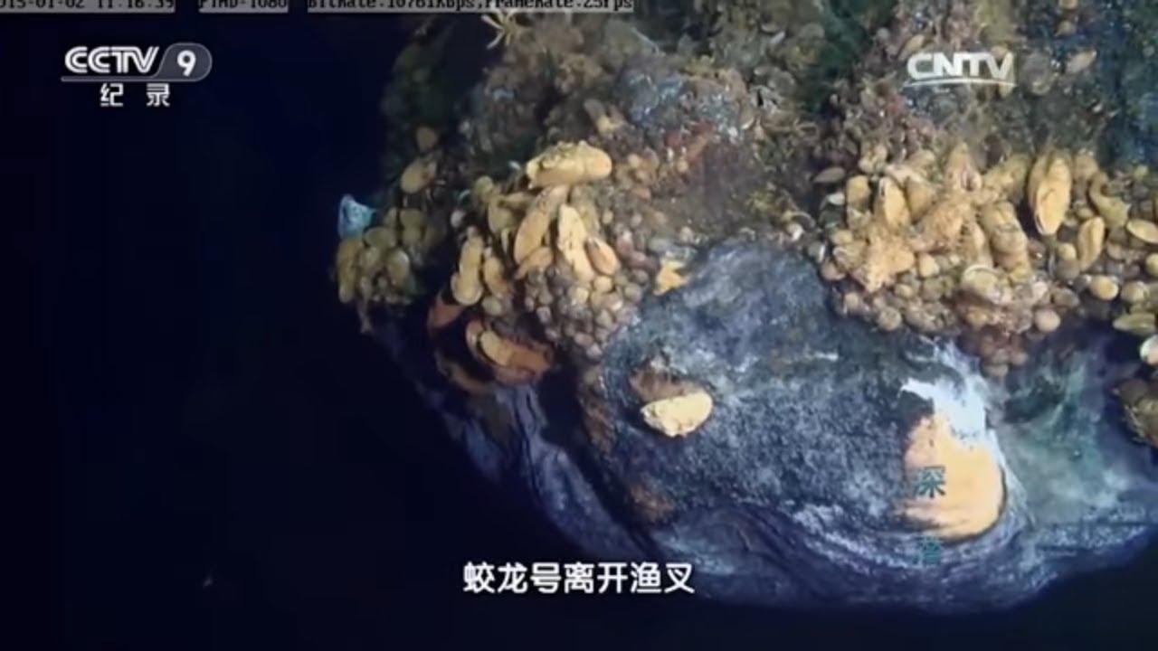 茫茫海底下黑螺 螃蟹 贻贝和虾挤作一团 咫尺之外便是寒冷和死亡!《深潜》第二集【CCTV纪录】