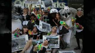 "The Wilderness Society says ""Officeworks Clean Up Your Act - Stop Selling Reflex Paper"""