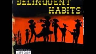 Delinquent Habits Western Ways