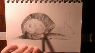 Speed Drawing - Snail