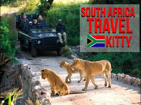 South Africa Travel Kitty
