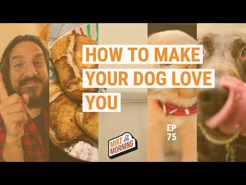 How to make your dog love you more | MIKE IN THE MORNING | ep 74