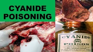 CYANIDE POISONING- Physical properties,Mechanism of action, Treatment, Postmortem findings