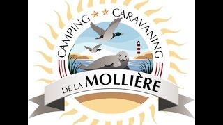 Camping de la Mollière – Camping, caravaning location et vente de chalets à Groffliers
