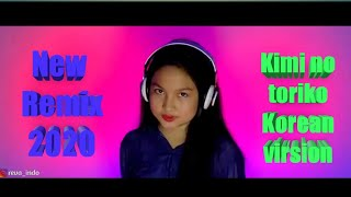 Kimi no toriko Rimix 2020   Reva Indo