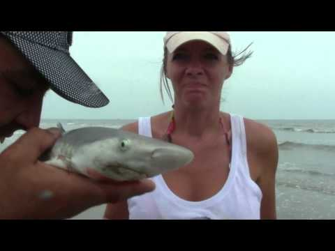 Shark PEE (WEE) Through Their Skin!!!