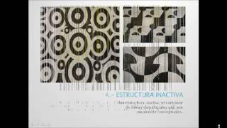 estructura y organizacion formal arquitectonica
