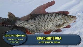 Большая ЩУКА Схватила ЖИВЦА! Рыбалка Осень 2017   Подводная съемка