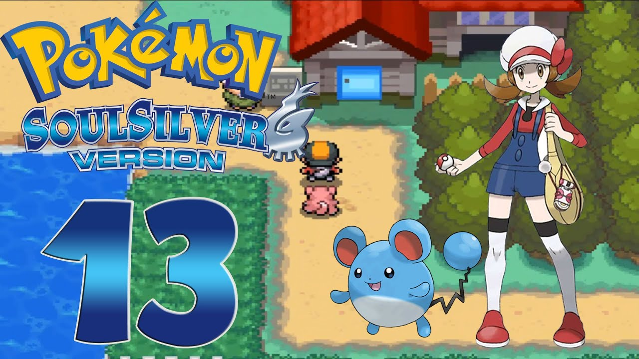 pokemon soul silver how to get to pewter city