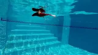 Видео эффективные проводки #джеркбейтZalt модели #Zalt #Зальт