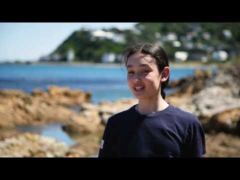 Who Are Mountains To Sea Wellington?