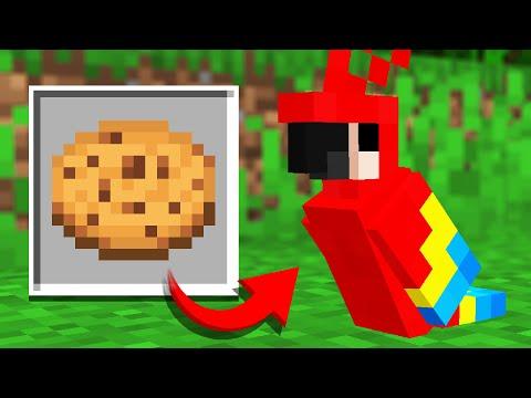 101 UNUSED Minecraft Updates