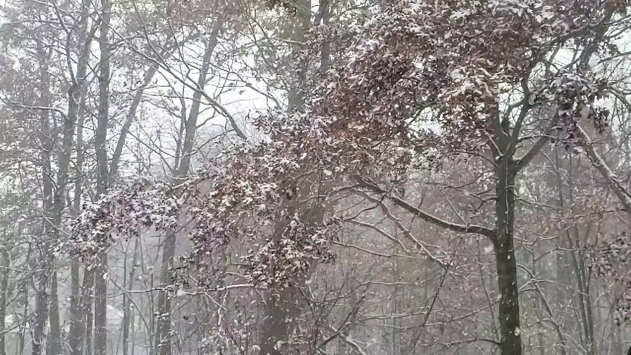Snowing in New Jersey