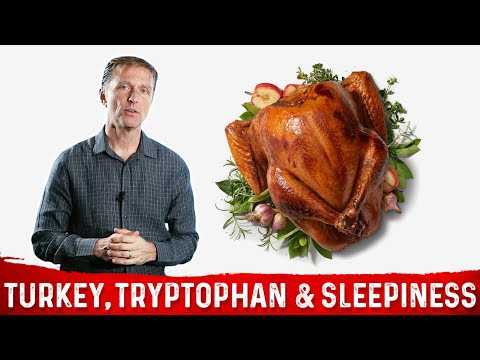 Turkey, Tryptophan & Sleepiness After that Thanksgiving Meal