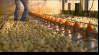 Unser Essen - The Future of Food (USA 2004) - Trailer deutsch/german