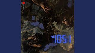 10:51 PM / THE NIGHT