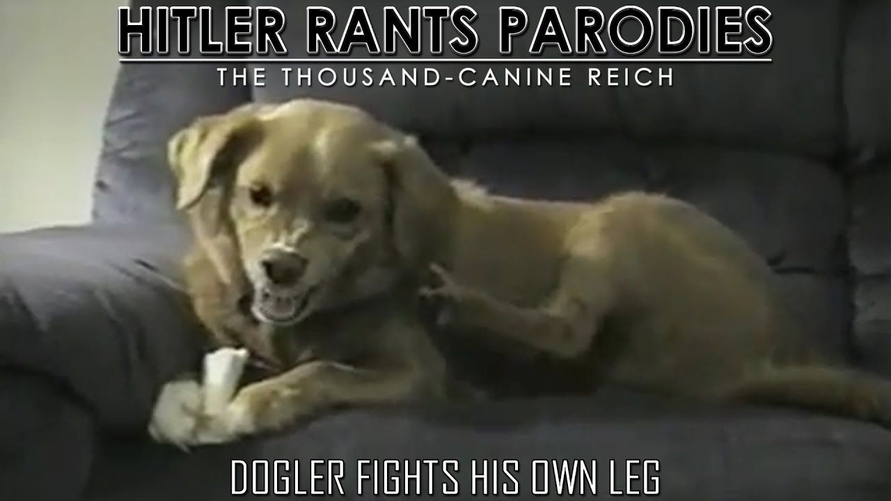 Dogler fights his own leg