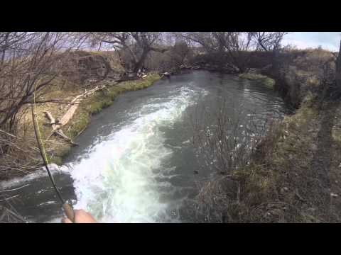 New Mexico Trout- GoPro: Part 2