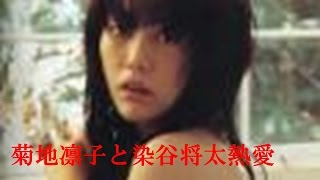 俳優の染谷将太(22)と女優の菊地凛子(33)が交際していると6日...