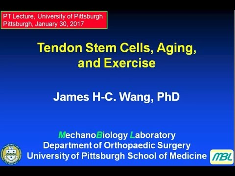 Tendon Stem Cells, Aging, and Exercise