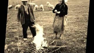 Lucania: Amara terra mia