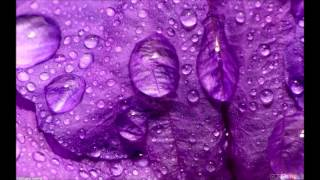Chew Fu feat. Steve Clisby - Purple Rain (Mousse T