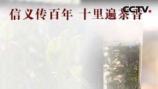 [中华优秀传统文化]义传百年遍茶香| CCTV中文国际