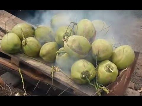 มาดูวิธีเผามะพร้าวน้ำหอมของชาวบ้าน Coconut perfume