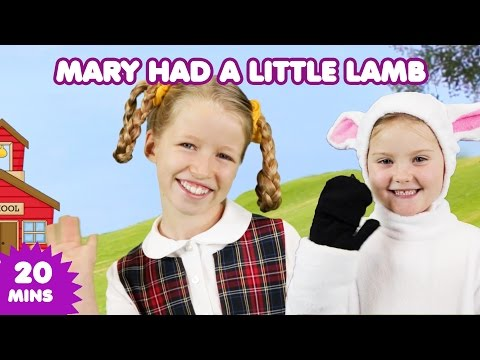 Mary Had a Little Lamb | Nursery Rhymes