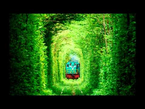 Tunnel Of Love in Ukraine 2017 Most Romantic place on Earth HD 2016 HD