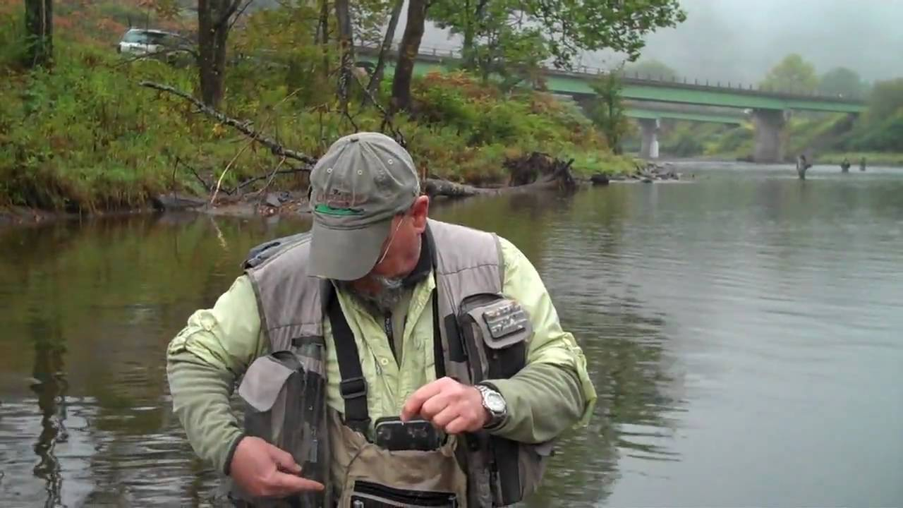 Opie 39 s eye part 4 the gregg and bobby fly fishing for Free fishing license ny