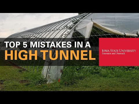 Top 5 Common Mistakes Made in a High Tunnel