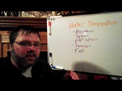 Catfish Chalk Talk #3  Water Temperature