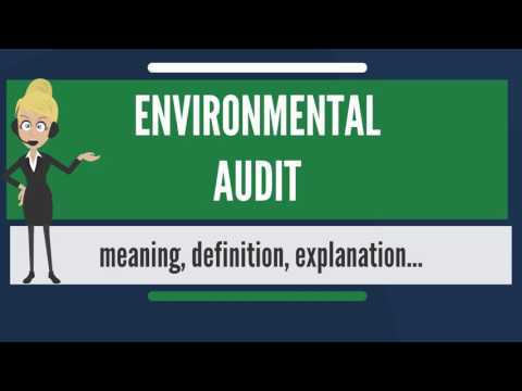 What is ENVIRONMENTAL AUDIT? What does ENVIRONMENTAL AUDIT mean? ENVIRONMENTAL AUDIT meaning