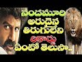 Jai Simha Balakrishna Silver Jubilee Movies with Same Director Same Producer | K.Ramakrishna