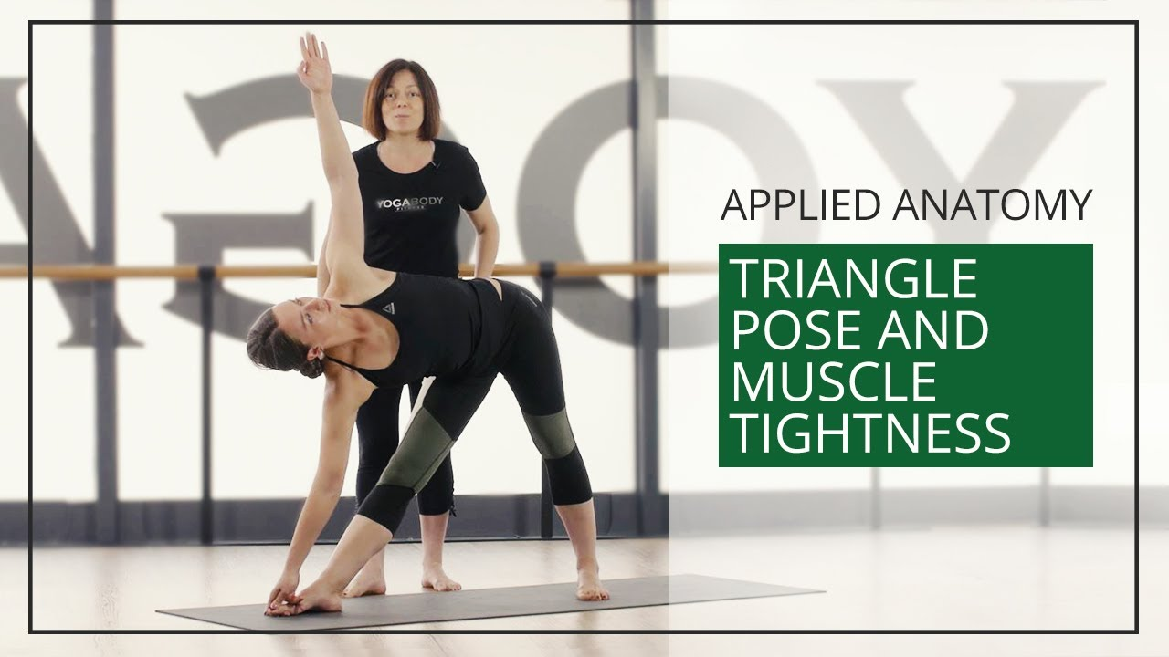 Applied Anatomy for Yoga Teachers: Triangle Pose & Muscle Tightness ...
