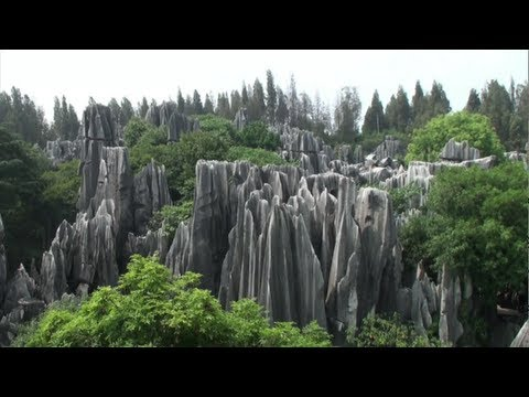 The stone forest (Shilin - Yunnan - China)