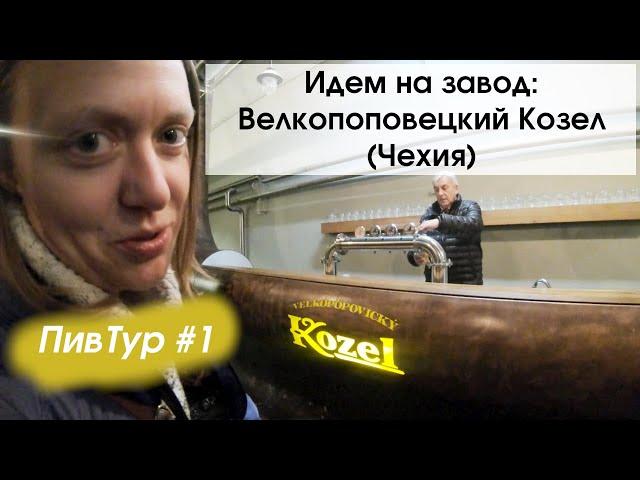 Жатецкий хмель и козлиная борода: как варят Велкопоповицкого Козла? 18+
