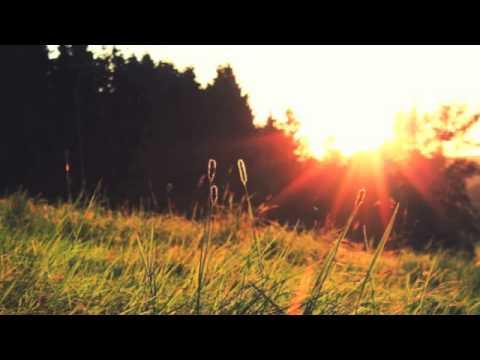 DJ AFX Summer Sunset Mix: Volume 1