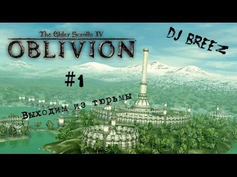 The Elder Scrolls IV Oblivion.  Часть 1 -