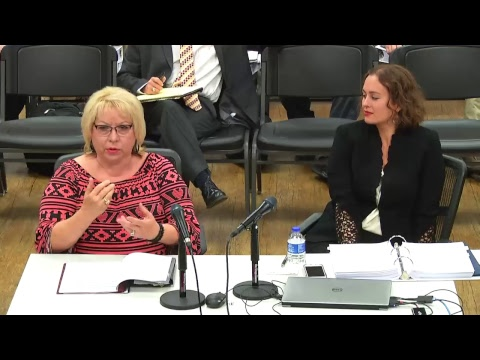 Special Executive and Finance Committee Meeting - 8/28/2017