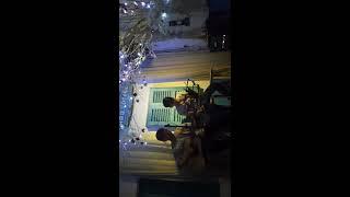 Trò Đùa Của Tạo Hoá ft Sao Ta Lặng Im cover by Mr Danh Đỗ at Apo Coffee Acoustic (20170723)