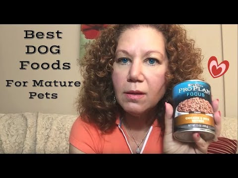 Healthy, Nutritious Dog Food- Purina Pro Plan and Blue Buffalo Review