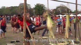 Muay Thai Banana tree kick ass