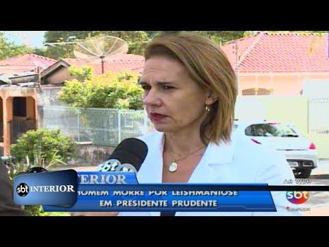 Homem morre por leishmaniose em Presidente Prudente