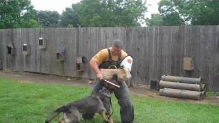Us K9 Unlimited Dog Training Academy Out Exercise   Kaplan, La.